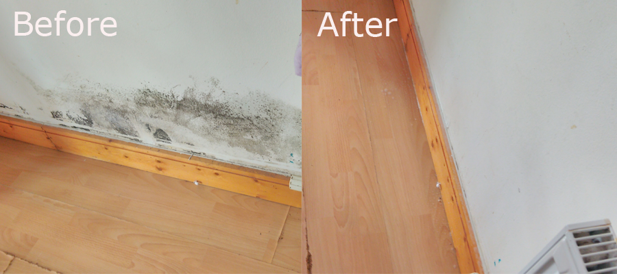 mould-removal-dublin