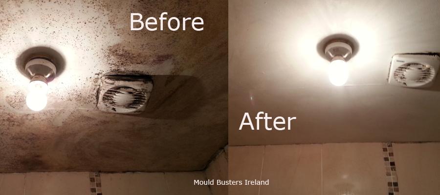 toxic-back-mould-ceiling-bathroom