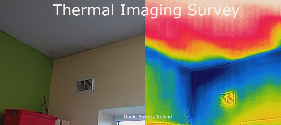 thermal-imaging-service-heat-loss-survey-wicklow
